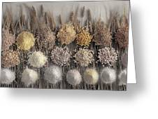 Assorted Grains And Flour Greeting Card
