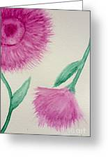 Aster In The Pink Greeting Card