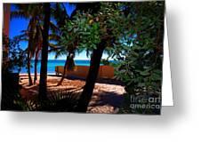 At Dog's Beach In Key West Greeting Card by Susanne Van Hulst
