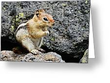 At Home In The Lava Beds Greeting Card