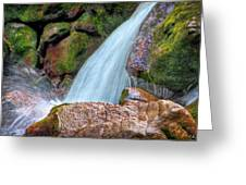 At Stony Creek Greeting Card