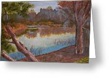 At The Bend On The Ocklawaha  Greeting Card