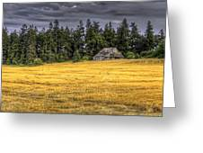 At The Edge Of The Field Greeting Card