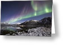 At The Fjord Greeting Card