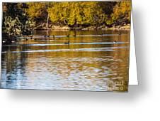 At The Lake-34 Greeting Card