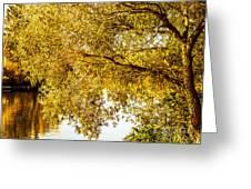 At The Lake -37 Greeting Card