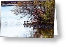 At The Lake-40 Greeting Card