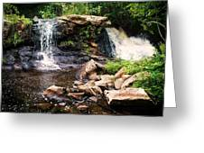 At The Mill Pond Dam Greeting Card