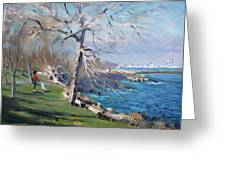 At The Park By Lake Ontario Greeting Card