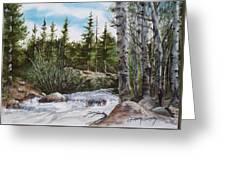 At The Top Of Alberta Falls Greeting Card