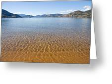 At The Water Edge. Greeting Card