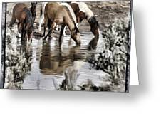 At The Watering Hole 1 Greeting Card