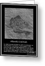 Atlantic Cod Fish Sketch Greeting Card