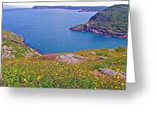 Atlantic Ocean From Signal Hill National Historic Site In Saint John's-nl Greeting Card