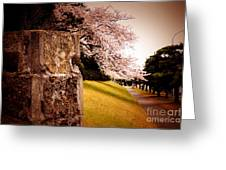 Atsugi Pillbox Walk   A1 Greeting Card