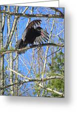Attack Of The Turkey Vulture Greeting Card