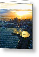 Auckland Oil On Canvaz Greeting Card