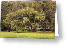 Audubon Park Greeting Card