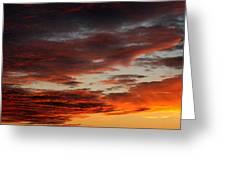 Audubon Sunset Light Greeting Card
