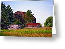 August Afternoon Greeting Card