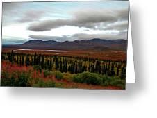 August In Alaska Greeting Card