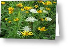 August Wildflowers Greeting Card