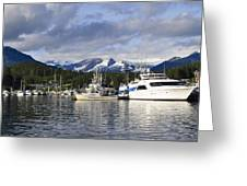 Auke Bay Harbor Greeting Card