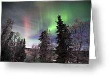 Aurora 2015 Greeting Card