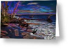 Aurora Borealis Over Florida Greeting Card