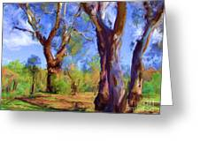 Australian Native Tree 2 Greeting Card