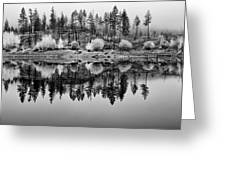 Autumn Reflection Black And White Greeting Card