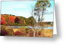 Autmn Pond Closer Look Greeting Card