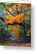 Autumn 4 Greeting Card