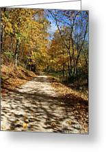 Autumn Afternoons Greeting Card