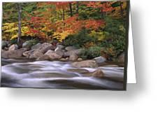 Autumn Along Swift River  Greeting Card