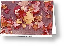 Autumn And Eighty Fourth Greeting Card