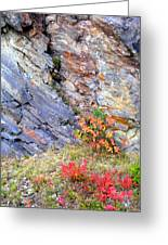 Autumn And Rocks Vertical Greeting Card