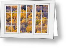 Autumn Aspen Trees White Picture Window View Greeting Card