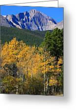 Autumn Aspens And Longs Peak Greeting Card