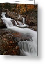 Autumn At Glen Ellis Falls Greeting Card