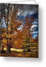 Autumn At Mc Cauley Mountain Greeting Card