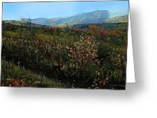 Autumn At Mt Rogers Greeting Card