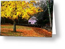 Autumn At Old Mill Greeting Card
