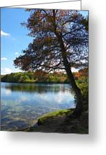 Autumn At Slough Pond Greeting Card