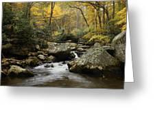 Autumn At Stony Creek Greeting Card