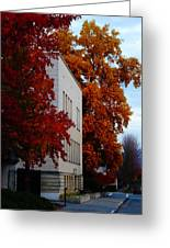 Autumn At The Grants Pass Courthouse Greeting Card