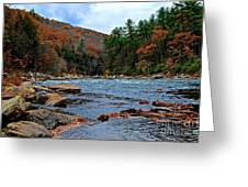 Autumn At The Youghiogheny Greeting Card