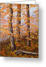 Autumn At Tishomingo State Park Greeting Card