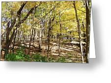 Autumn At Waterfall Glen Greeting Card