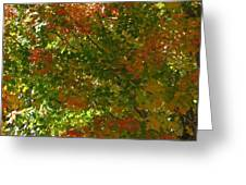 Autumn  Banner Greeting Card